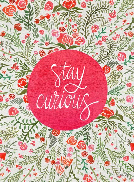 StayCurious