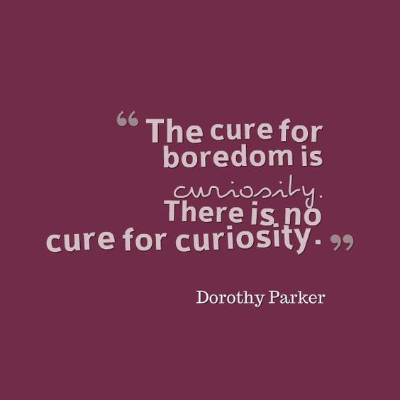 Curious Quote_6